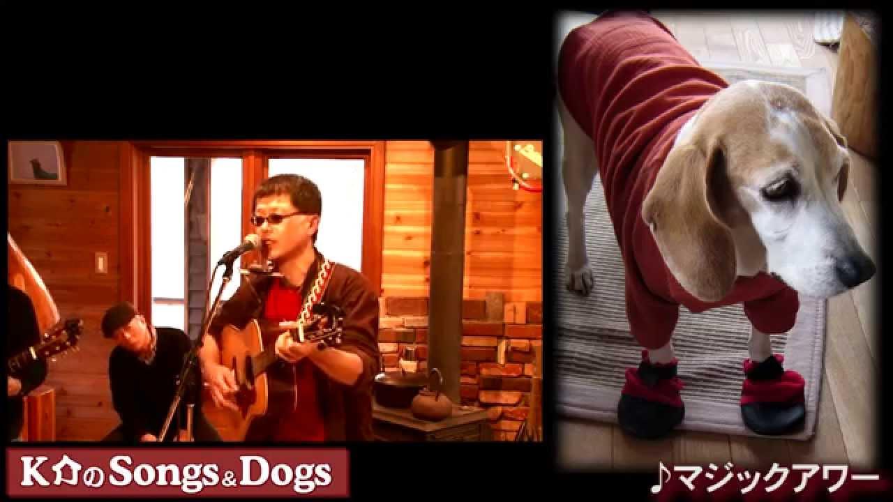 K介のSongs&Dogs週末はミュージシャン~51