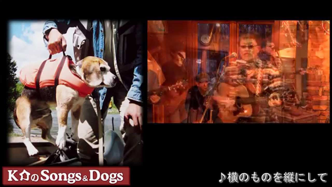 K介のSongs&Dogs週末はミュージシャン~53