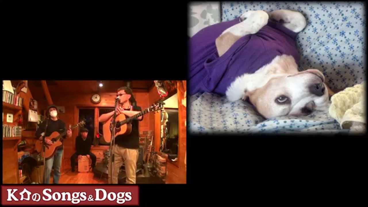 K介のSongs&Dogs週末はミュージシャン~54