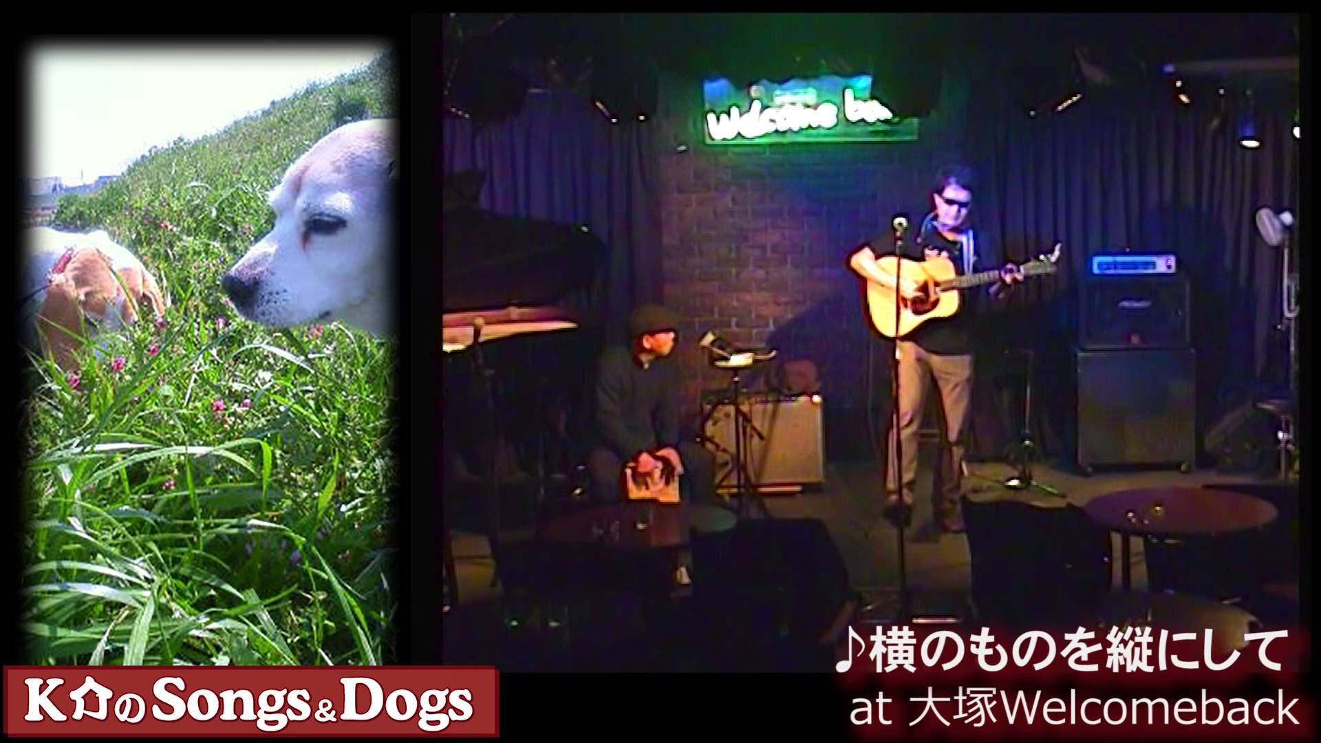 K介のSongs&Dogs週末はミュージシャン~56
