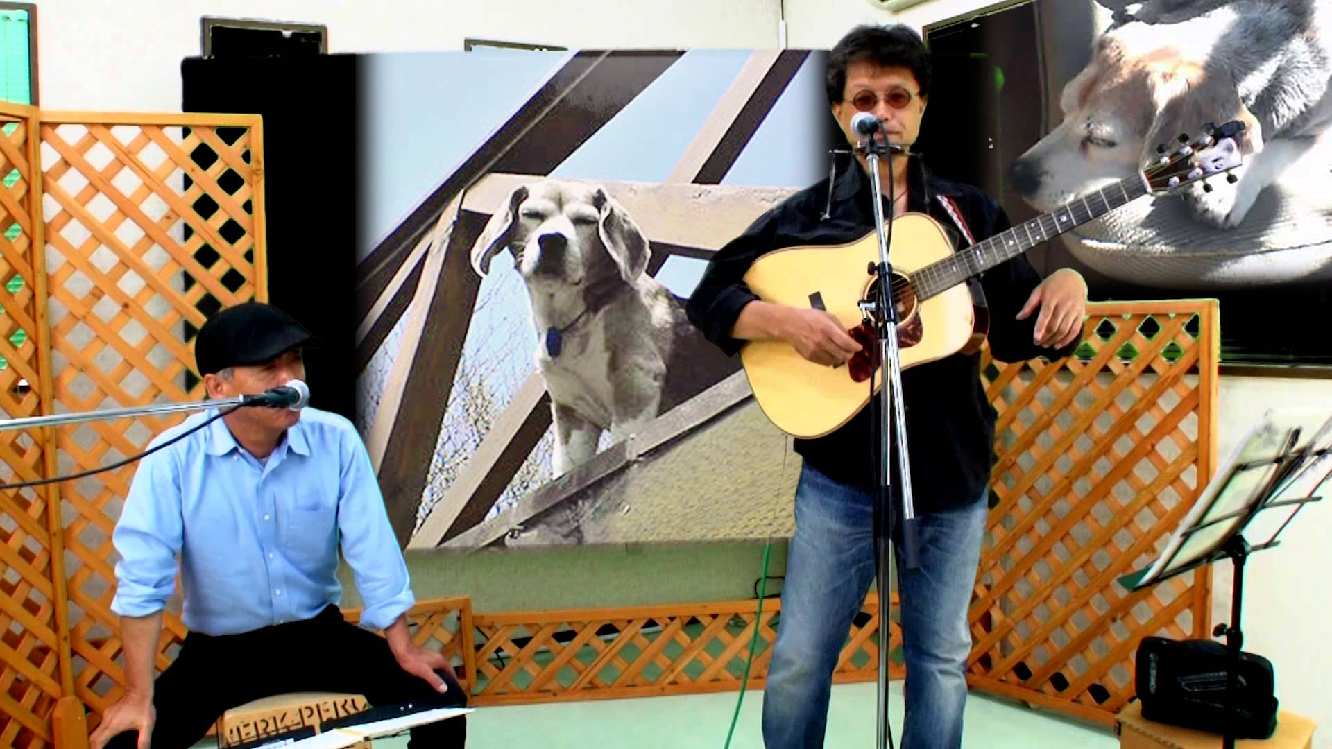 K介のSongs&Dogs週末はミュージシャン68