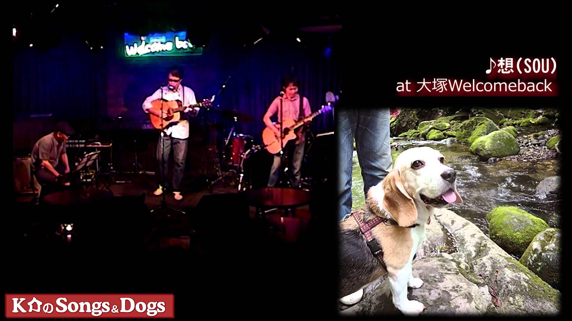 K介のSongs&Dogs週末はミュージシャン74