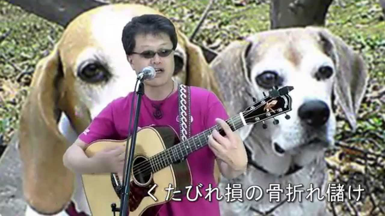 K介のSongs&Dogs週末はミュージシャン~11