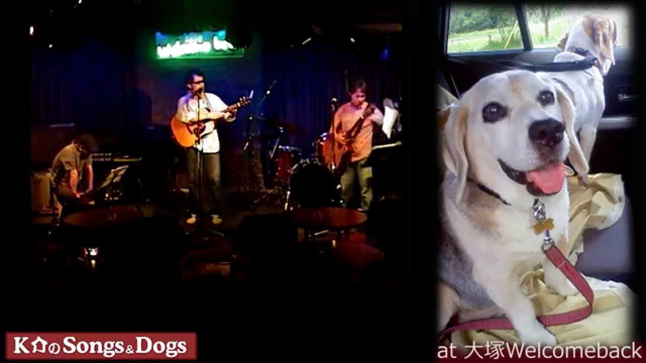 K介のSongs&Dogs週末はミュージシャン76