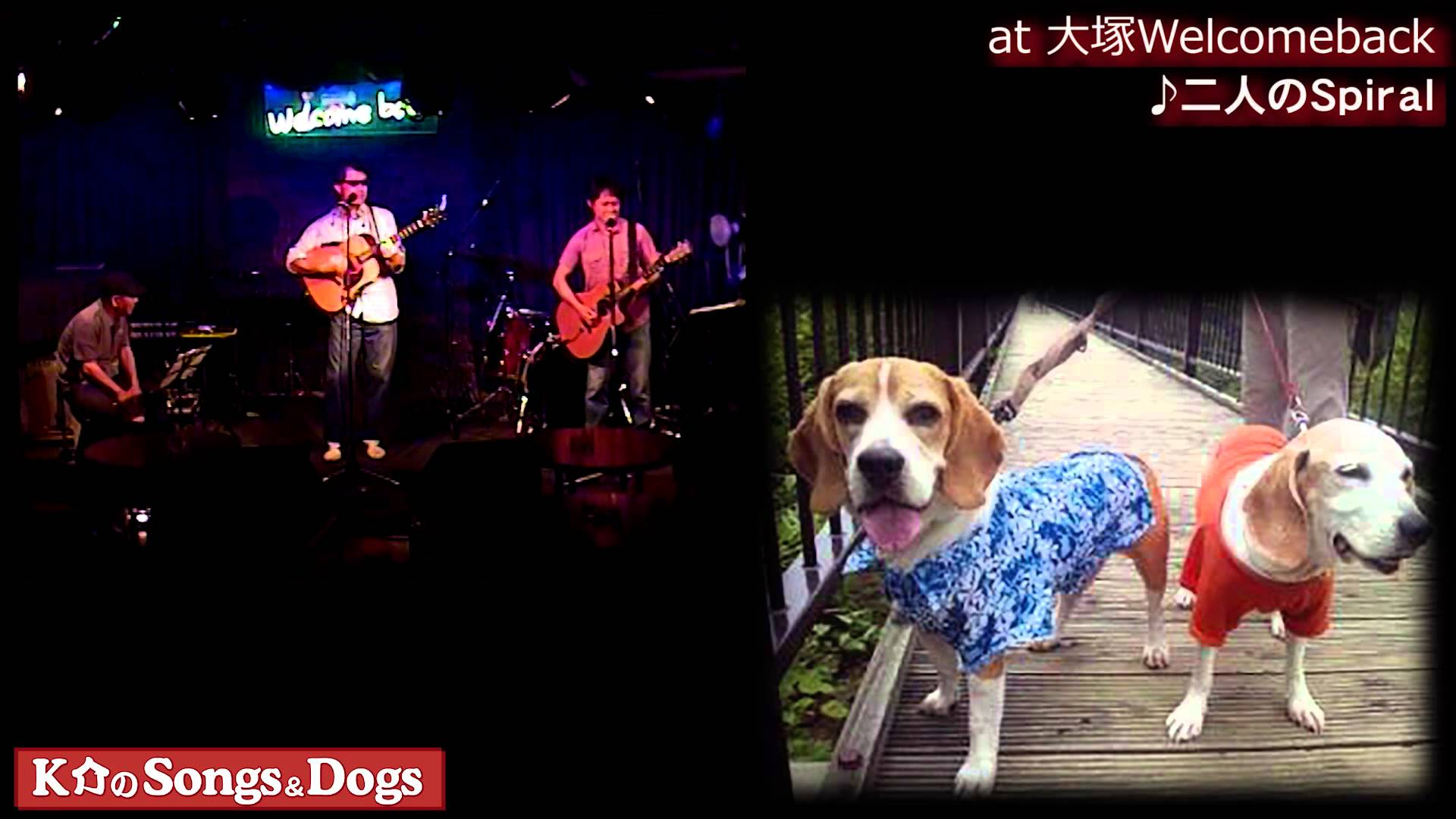 K介のSongs&Dogs週末はミュージシャン78