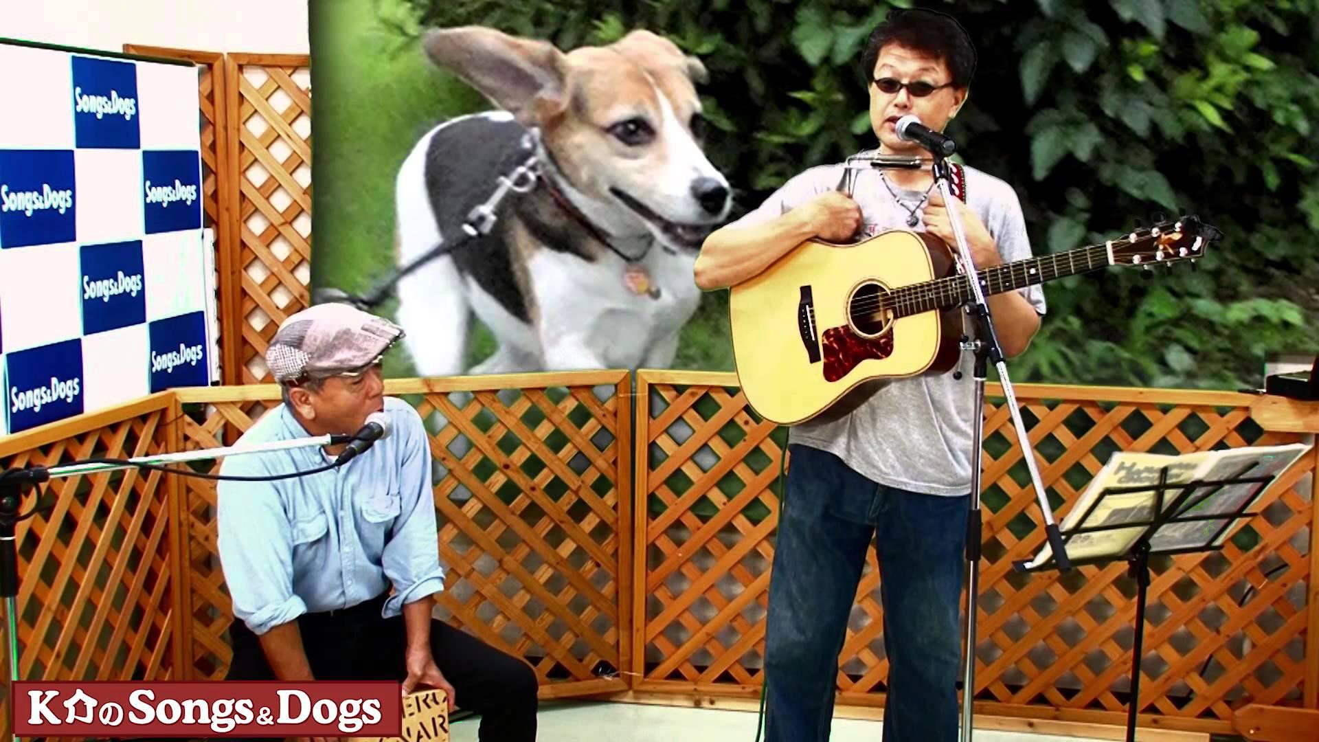 K介のSongs&Dogs週末はミュージシャン81