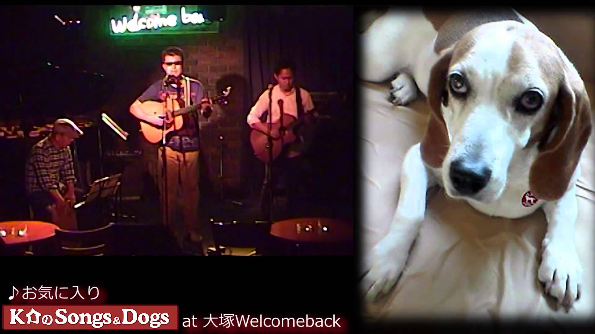 K介のSongs&Dogs週末はミュージシャン91